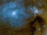 LMDSS data Rho Ophiuchi