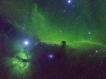 Horsehead nebula in SHO from LMDSS